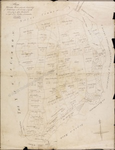 Historic map of Pickering 1779