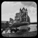 Whitby Abbey from East