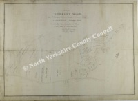 Historic map of Newholm cum Dunsley 1793